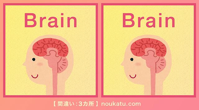間違い探し問題脳の活性化