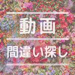 【アハ体験】脳トレ間違い探し動画|no.22