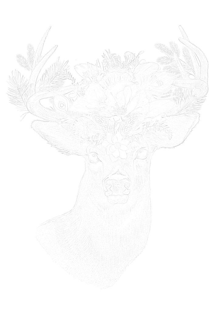 大人の描き塗り絵01_無料プリント
